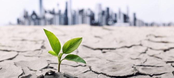 Artigo: Será 2019 o ano da transformação ágil?