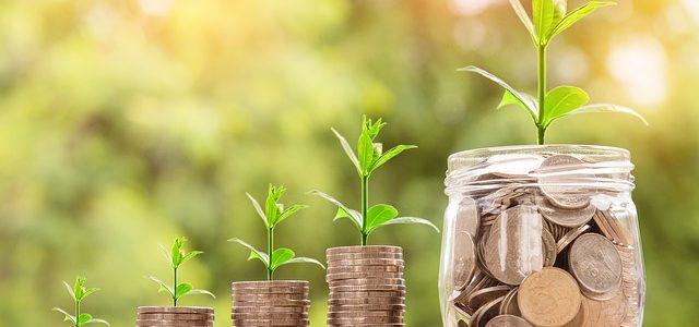 Guia completo para investidores iniciantes